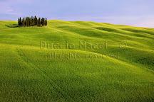 La Bottega del Sale di Duccio Nacci photographer, San Gimignano, Italy