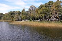 Hickory Point Recreation Park, Tavares, United States