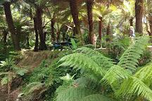 Paradise Picnic Reserve, Apollo Bay, Australia