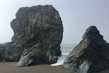 Goat Rock Beach, Jenner, United States