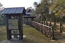James E Grey Preserve, New Port Richey, United States