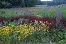 Westville Recreation Area, Sturbridge, United States