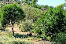 Olive Pink Botanic Garden, Alice Springs, Australia