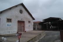 Museu Do Vinho De Alcobaca, Alcobaca, Portugal