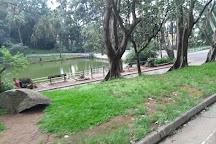Florestal Orchard of Sao Paulo, Sao Paulo, Brazil