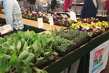 Trenton Farmers Market, Trenton, United States