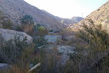Hellhole Canyon Trail, Borrego Springs, United States