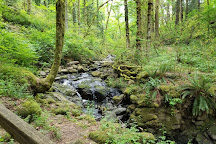 Tryon Creek State Natural Area, Portland, United States
