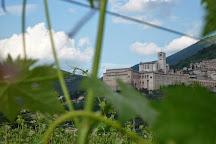 Azienda Agraria Saio, Assisi, Italy