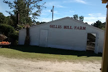 Gillis Hill Farm, Fayetteville, United States
