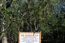 Souvenir Leo, La Fortuna de San Carlos, Costa Rica