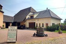 Vignoble Andre Scherer, Husseren-les-Chateaux, France