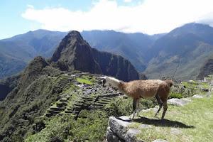 www.privatetoursperu.com. David Expeditions Peru 5