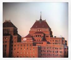 NYC Health + Hospitals/Kings County new-york-city USA