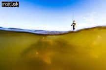 Salt Minded Fishing Charters, Kill Devil Hills, United States