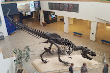 New Mexico Museum of Natural History and Science, Albuquerque, United States