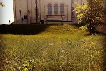Spaso-Preobrazhensky Cathedral, Abakan, Russia