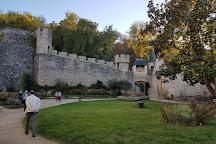 Chateau de Cenevieres, Cenevieres, France