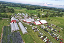 Reid's Orchard, Owensboro, United States
