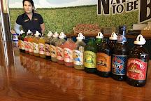 Bundaberg Brewed Drinks, Bundaberg, Australia