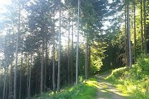 Merkur Mountain, Baden-Baden, Germany