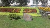 Росток, улица Урицкого на фото Пензы