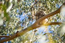 Kangaroo Island Adventure Tours, Adelaide, Australia