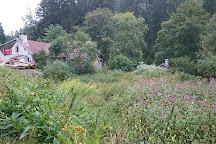 Association du Lançoir, Ban-sur-Meurthe-Clefcy, France