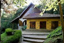 Deutscher Wald / Bosque Alemao, Curitiba, Brazil