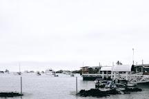 Planeta Azul, Puerto Ayora, Ecuador