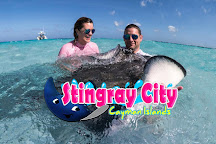 Stingray City Grand Cayman, Grand Cayman, Cayman Islands