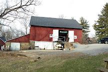 Willowcroft Farm Vineyards, Leesburg, United States