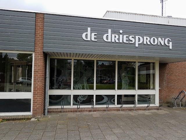 Sporthal De Driesprong