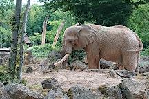 Zoo d'Amnéville, Amneville, France