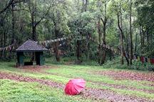 Nagarjun Forest Reserve, Kathmandu, Nepal
