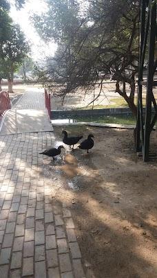 Bird Aviary lahore