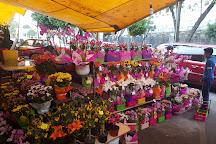 Mercado de Flores, Mexico City, Mexico