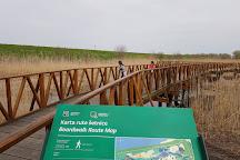 Kopacki Rit Nature Park, Bilje, Croatia