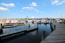 Shark's Cove Marina, Fenwick Island, United States