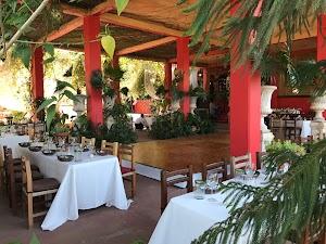 Vallarta Botanical Gardens AC