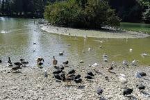 Swanbourne Lake, Arundel, United Kingdom