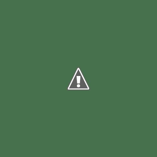 Carré d'artistes Paris L'Expo