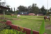 Sky Ranch, Tagaytay, Philippines