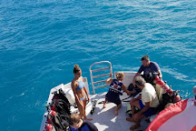 Fantasea Diving & Water Sports, Hamilton, Bermuda