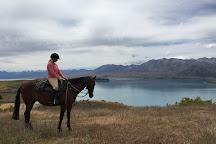 Mackenzie Alpine Horse Trekking, Lake Tekapo, New Zealand