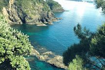 Sea Shuttle Bay of Islands, Paihia, New Zealand