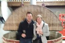 Champagne Lequien et Fils, Chavot-Courcourt, France