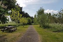 Barling Magna Wildlife Reserve, Barling, United Kingdom