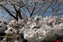 Mochio Park, Miyakonojo, Japan