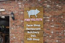 The Pink Pig Farm, Scunthorpe, United Kingdom